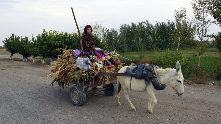 Old woman Uzbekistan