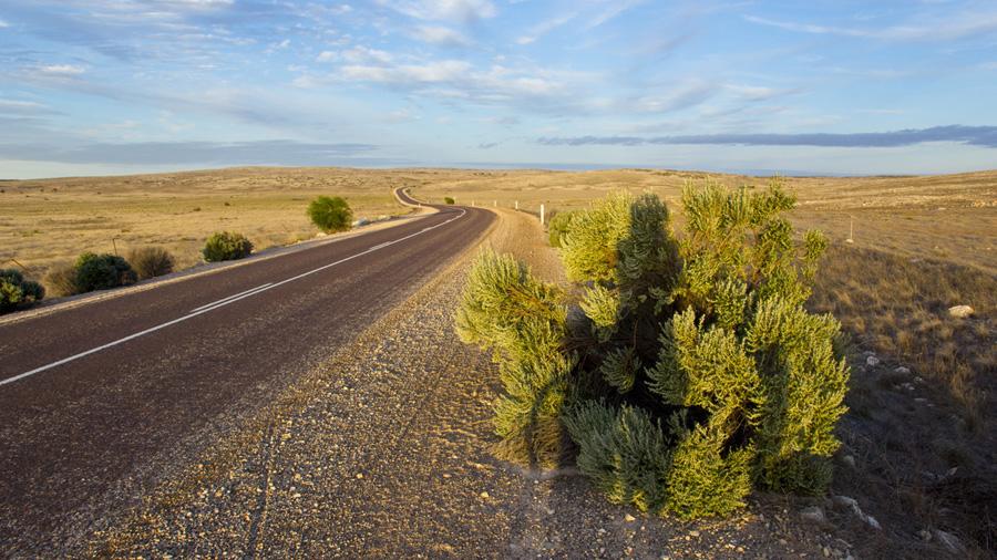 Cycling touring across Australia